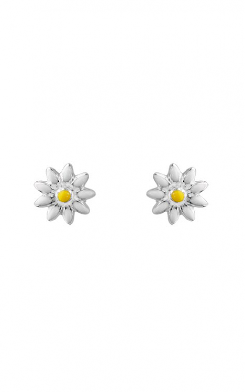 Aucoin Hart Jewelers Earrings FK-11558 product image