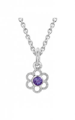 Aucoin Hart Jewelers Necklace EL-2021 product image