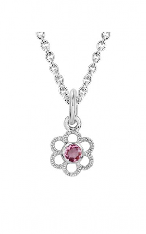 Aucoin Hart Jewelers Necklace EL-2361 product image